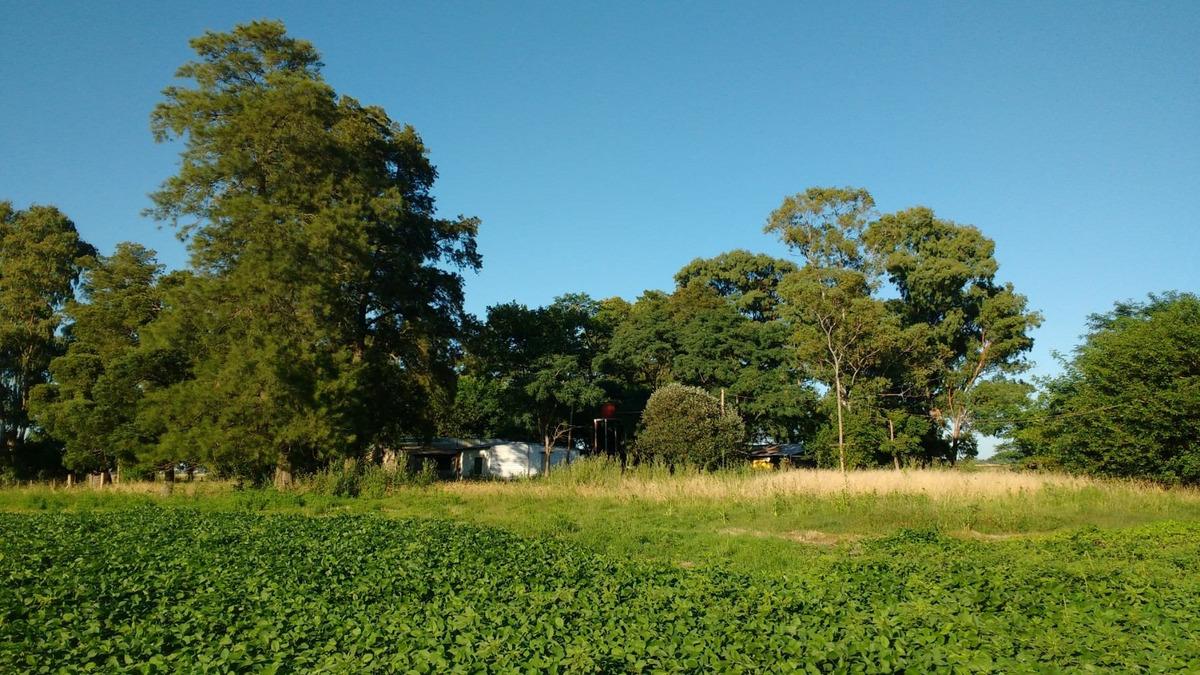 campo 10 has agricola - roque pérez