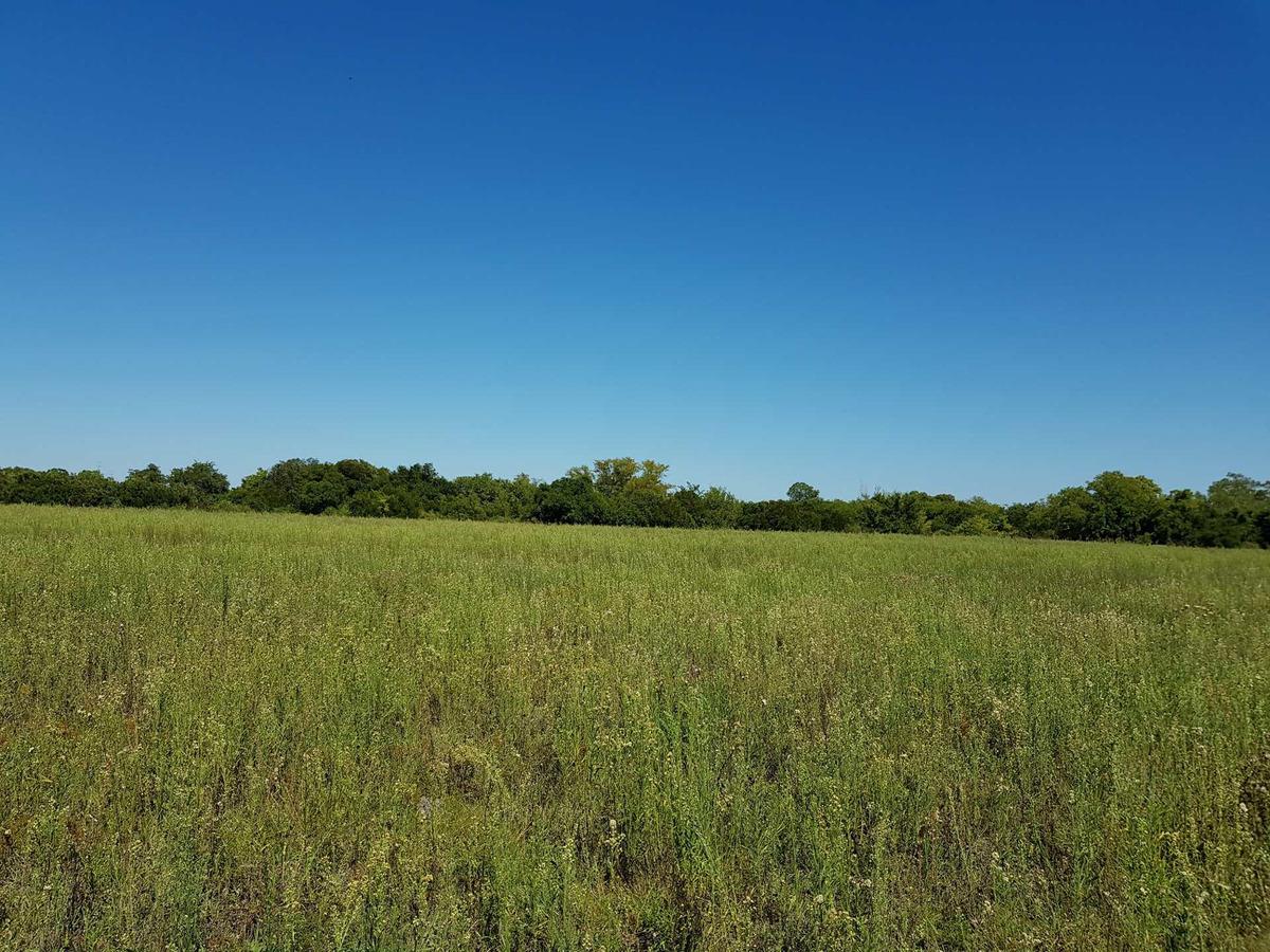 campo 10,5 hás con frente de 350 mts sobre ruta 6