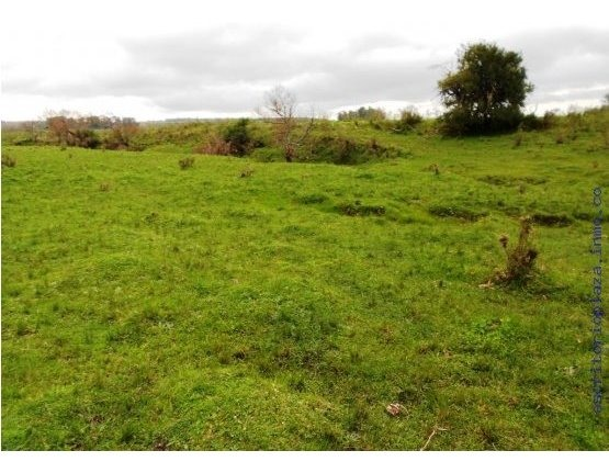 campo 11 hectareas con arroyo san jacinto