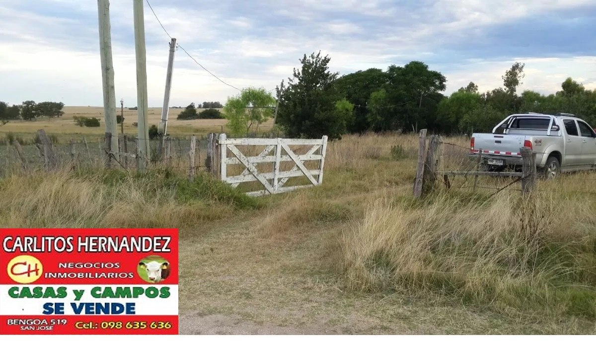 campo 14 ha costa d arroyo cn casas ute u$ 79.900 posible fi