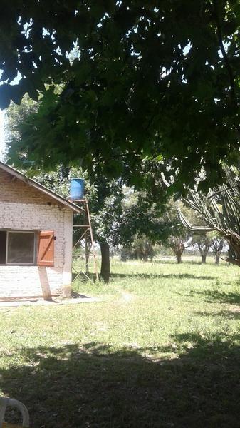 campo -16 has!!!!! muy cerca de la autopista ezeiza -cañuelas!!!!!tristan suarez