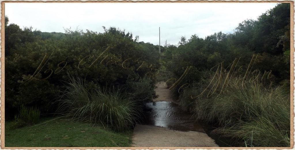 campo 173 hectáreas