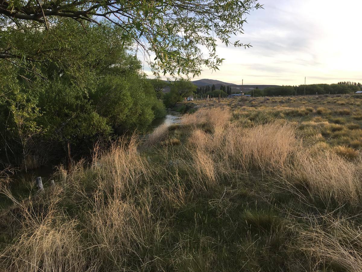 campo 2 has con costa del río gualjaina, chubut