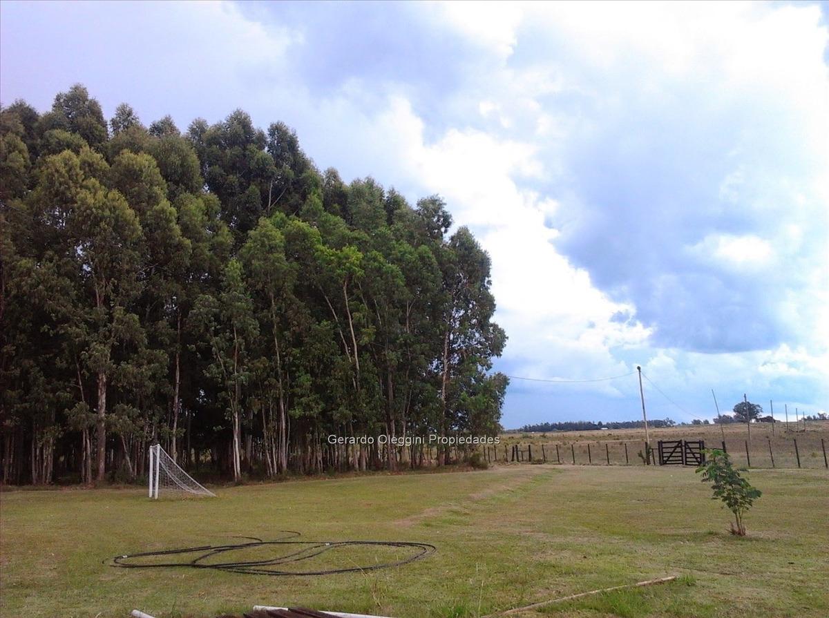 campo 20 hectáreas.ruta 65, km 90.500.