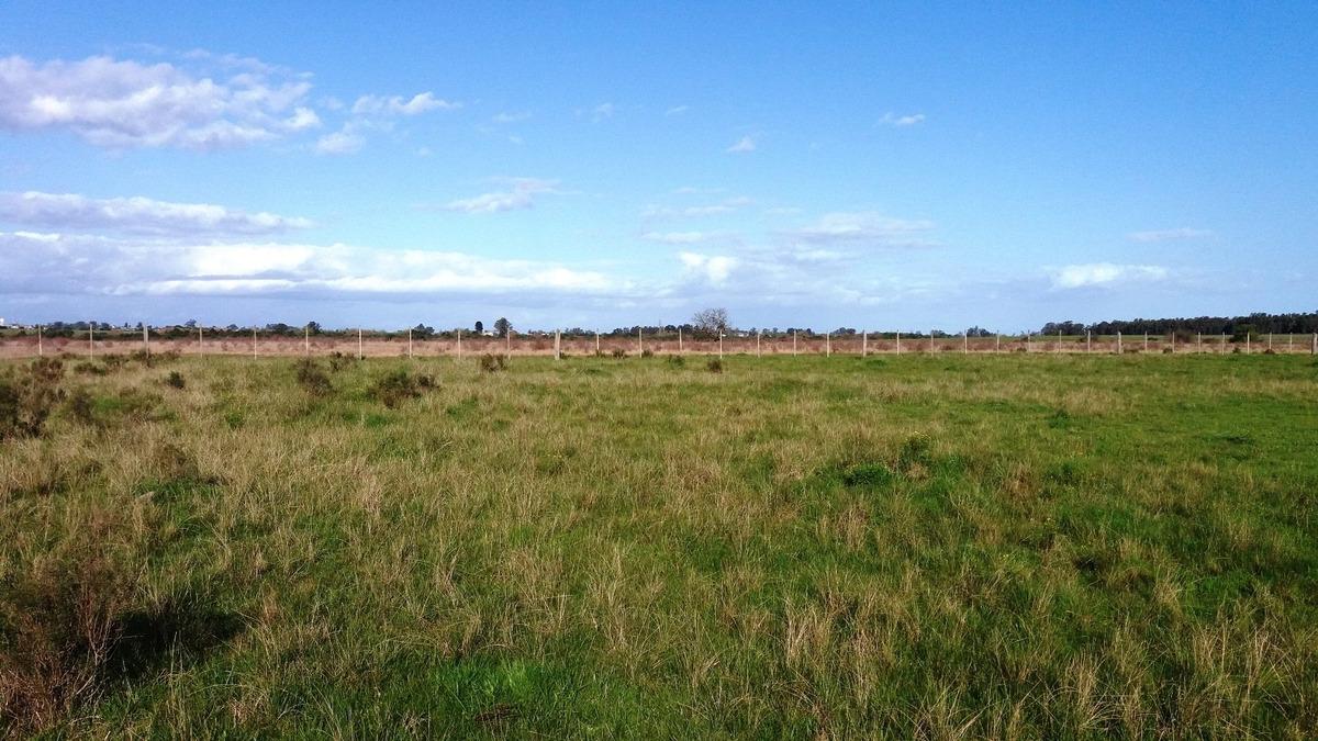 campo 24 y 1/2 has. agricola ganadero en tala