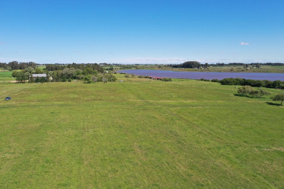 campo 3 hectáreas sobre lago canelon grande