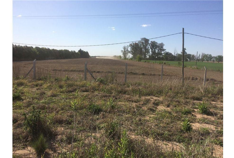 campo 4 hectareas casilda frente asfaltado ruta
