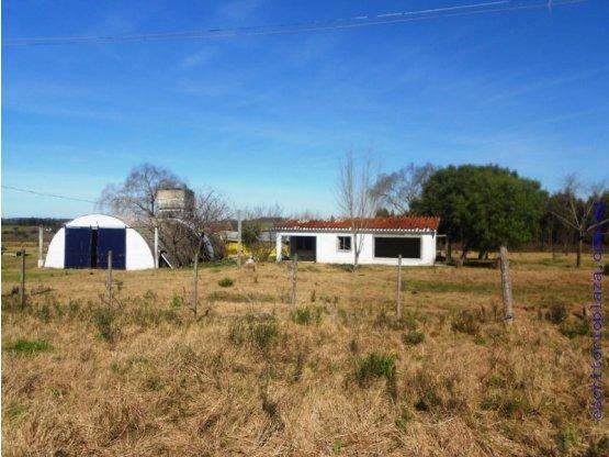 campo 5 has criadero y casa a reparar. financio
