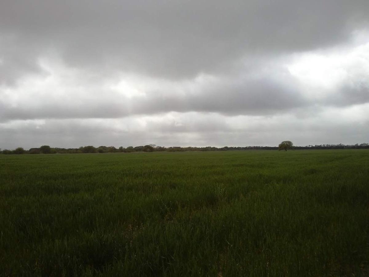 campo 56 hs villa esquiu viejo camino al tirol
