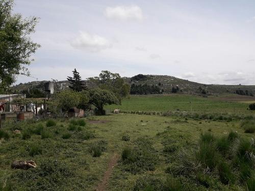 campo 6 hectáreas al pie de la sierra