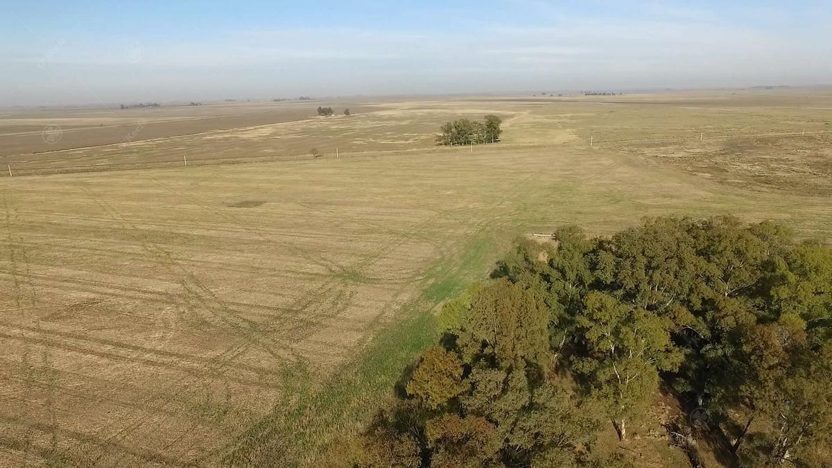 campo  60 % agrícola de 414 has - oportunidad de inversión!