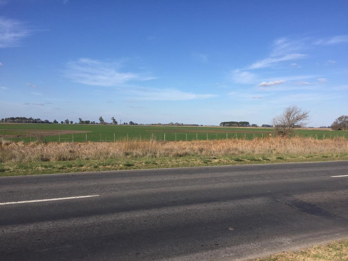 campo 60 ha sobre ruta 51 - 25 de mayo