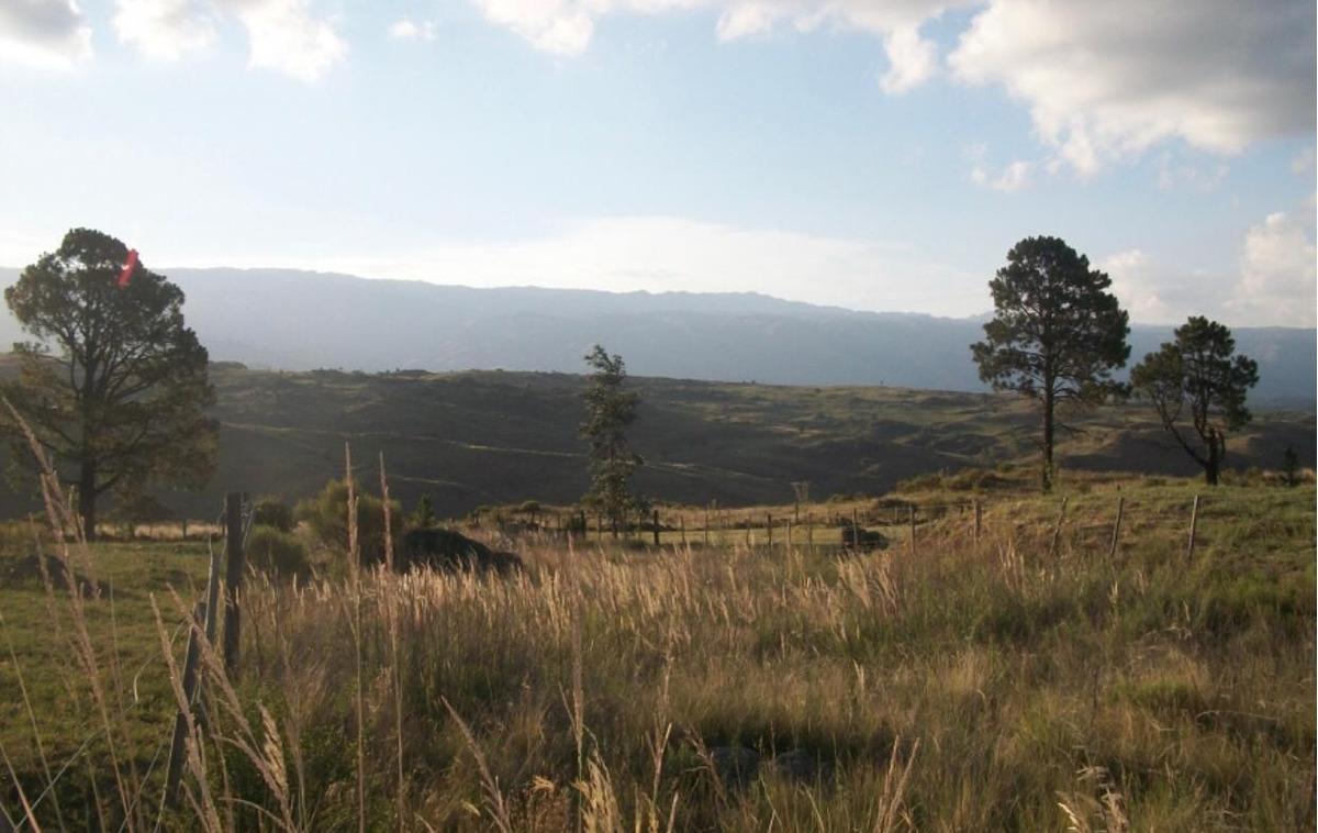 campo 75 ha c/arroyo quebrada vertiente yacanto calamuchita