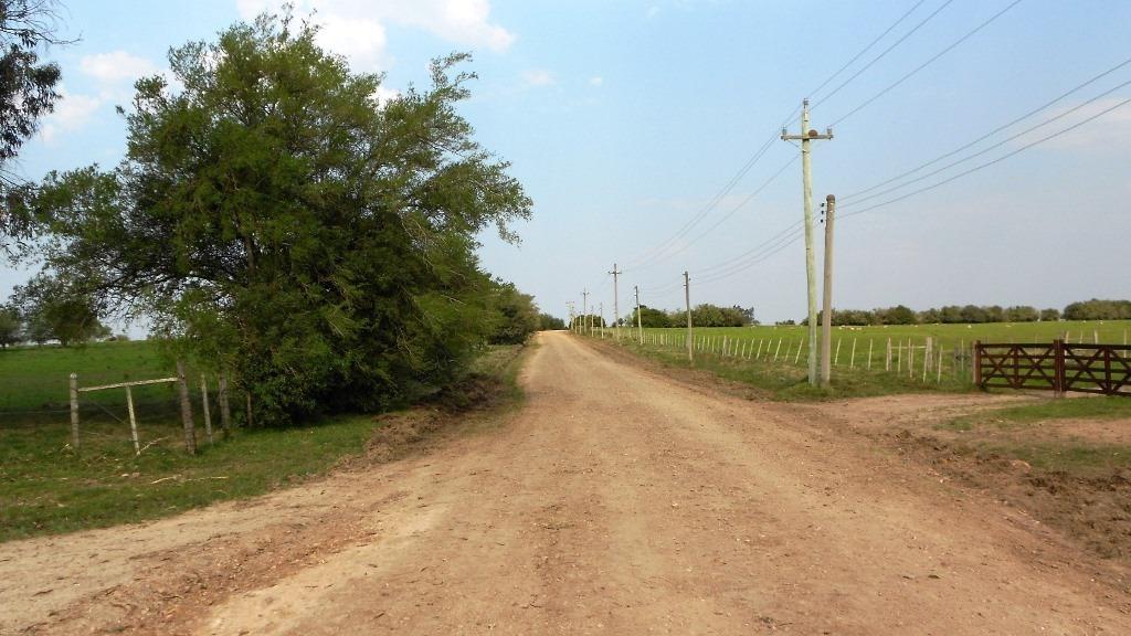 campo 75 has. agricola rio y arenera lavalleja