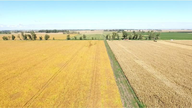campo 960 has agrícolas-ganaderas - a 1.30hs de caba