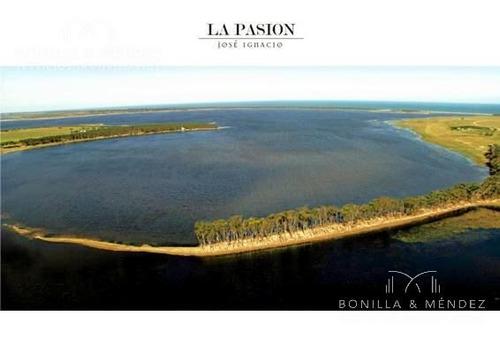 campo a minutos de josé ignacio con 1200 metros de costa a laguna anastasia