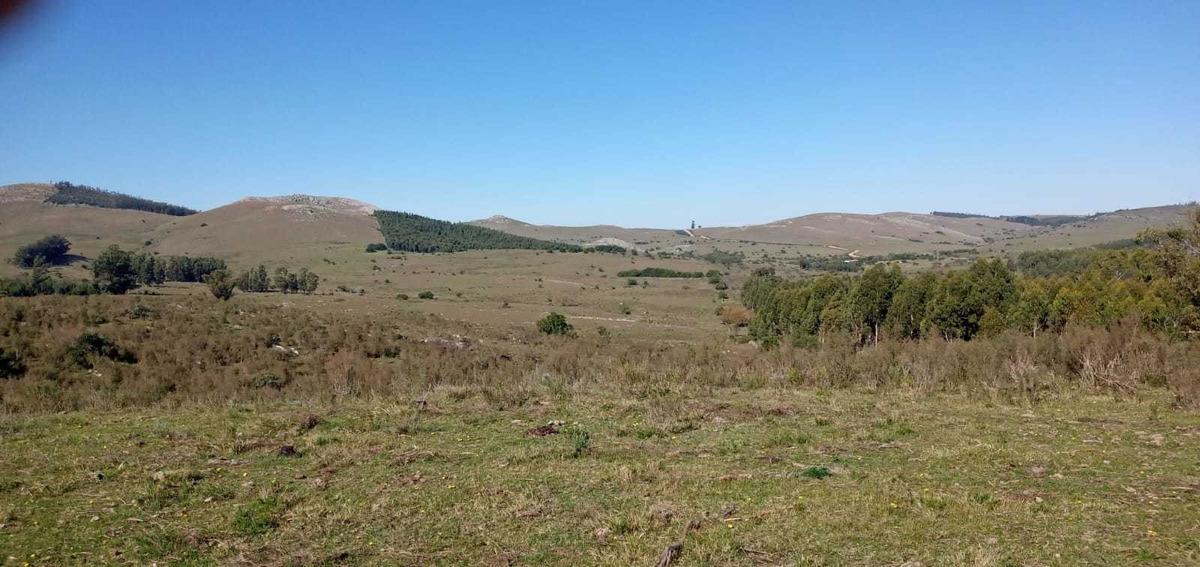 campo a pocos kilómetros de minas