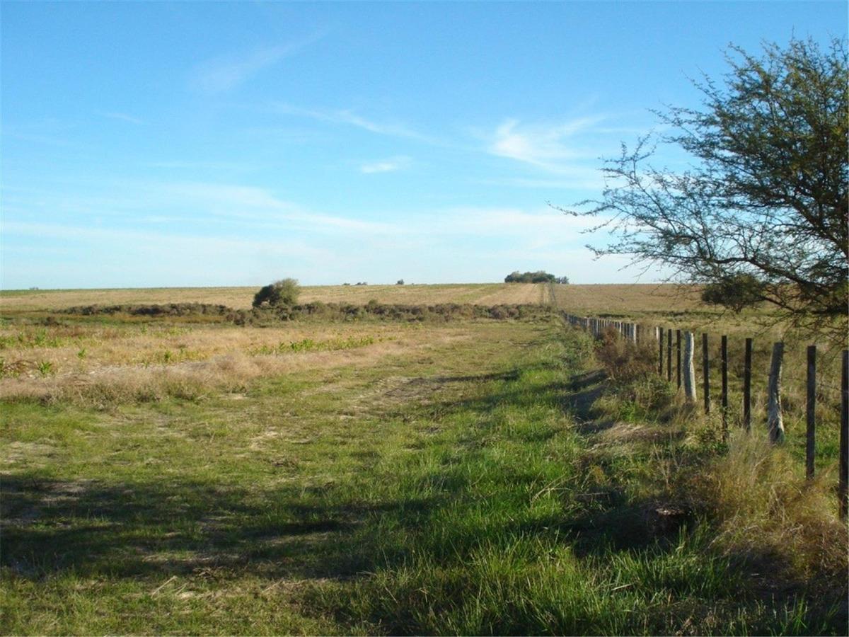 campo agrícola  200 has.