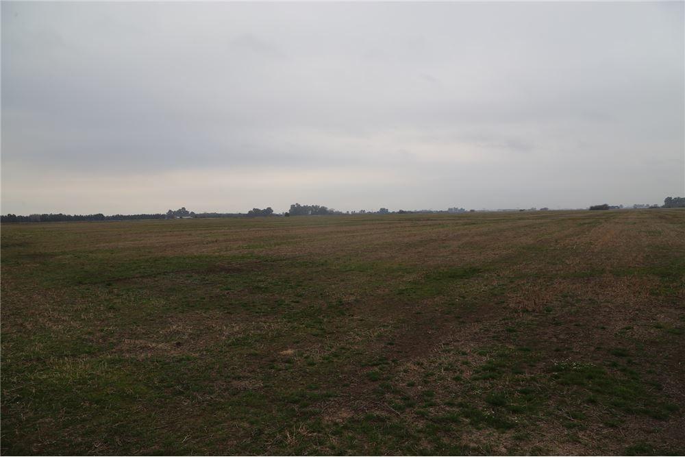 campo agricola - exaltacion de la cruz