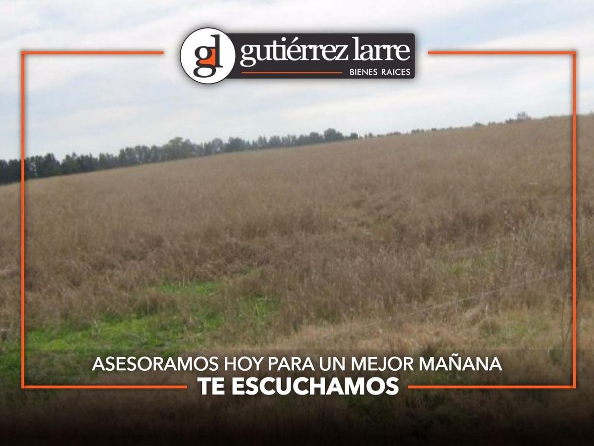 campo agrícola ganadero 235 ha, excelentes recursos hídricos