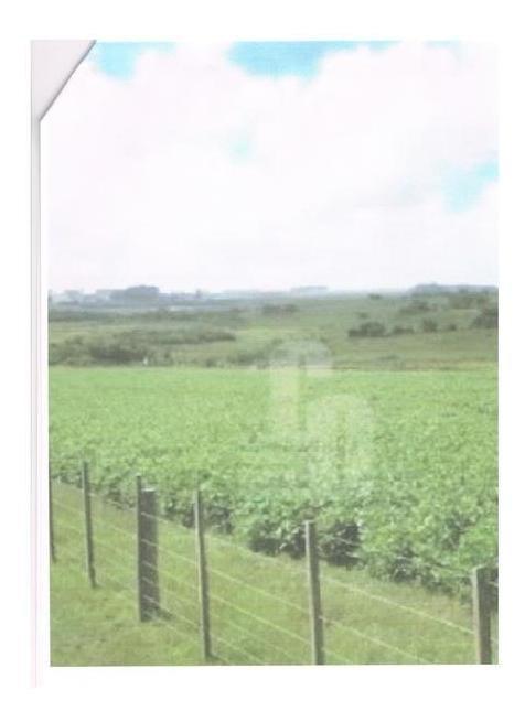 campo agricola ganadero en cerro largo 1400 hectáreas, 900 de soja , casco en excelentes condiciones