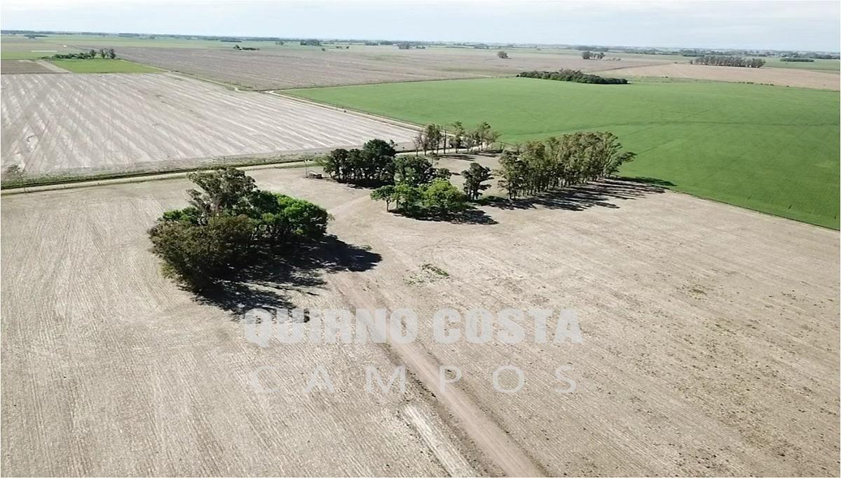 campo agricola venta capitan sarmiento antonio areco duggan