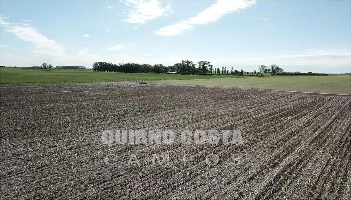 campo agricola venta san antonio de areco duggan