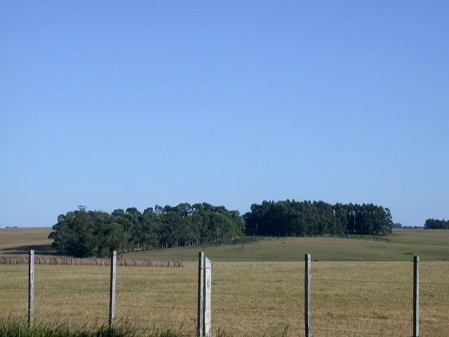 campo agrícola/turístico, 1970 hectáreas sobre ruta maldonado