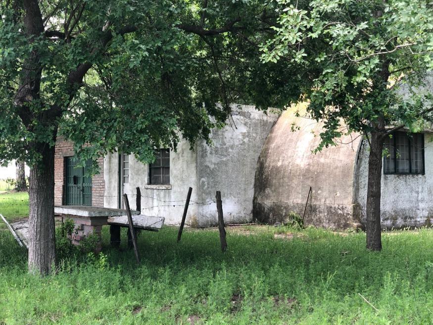 campo agroganadero lincoln /sobre ruta 188