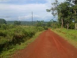 campo apto todo destino, suelos 9a, 6 ay 6 b. bosque nativo