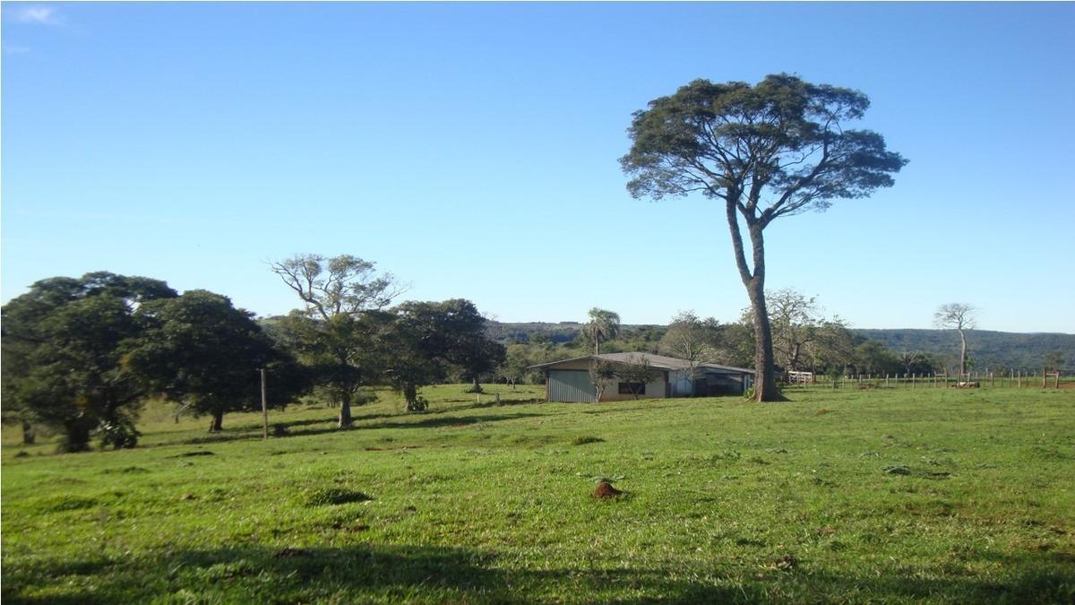 campo chacra - 376 hectáreas sobre ruta nac. n° 14