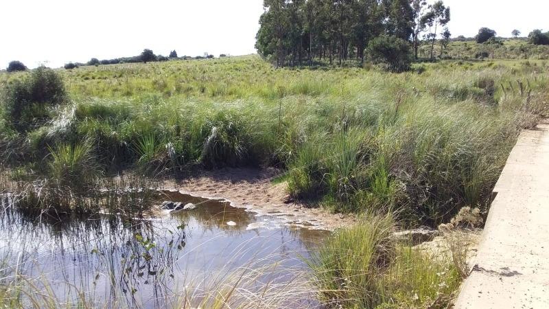 campo chacra   salsipuedes  en puntas de josé ignacio
