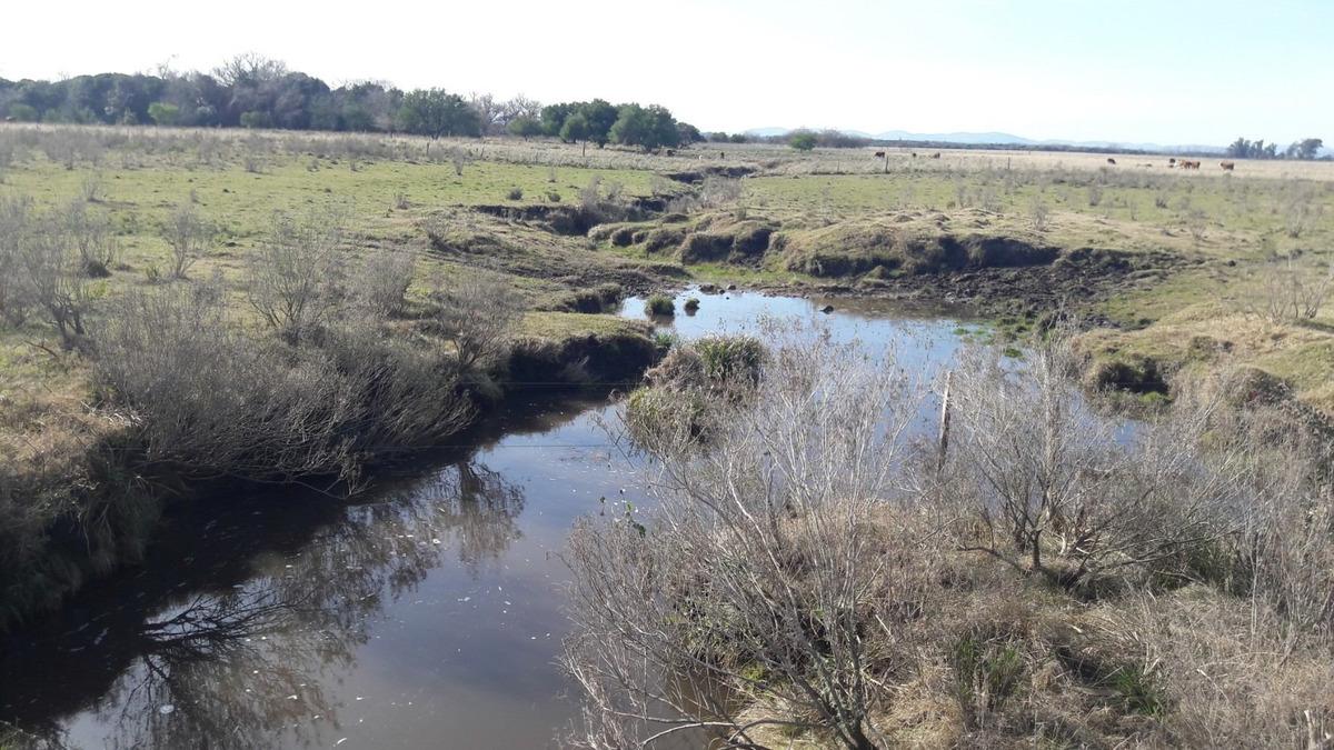campo con arroyo al fondo, cañada, sobre ruta y camino