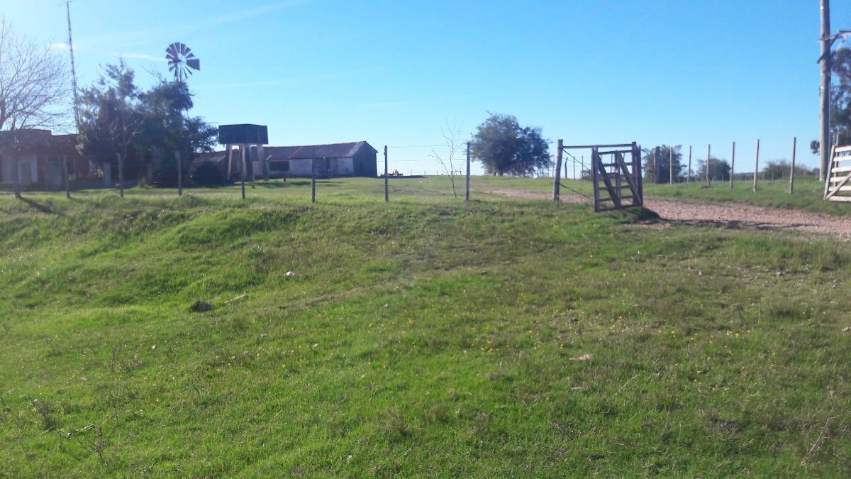 campo con casa galpón y excelentes aguadas