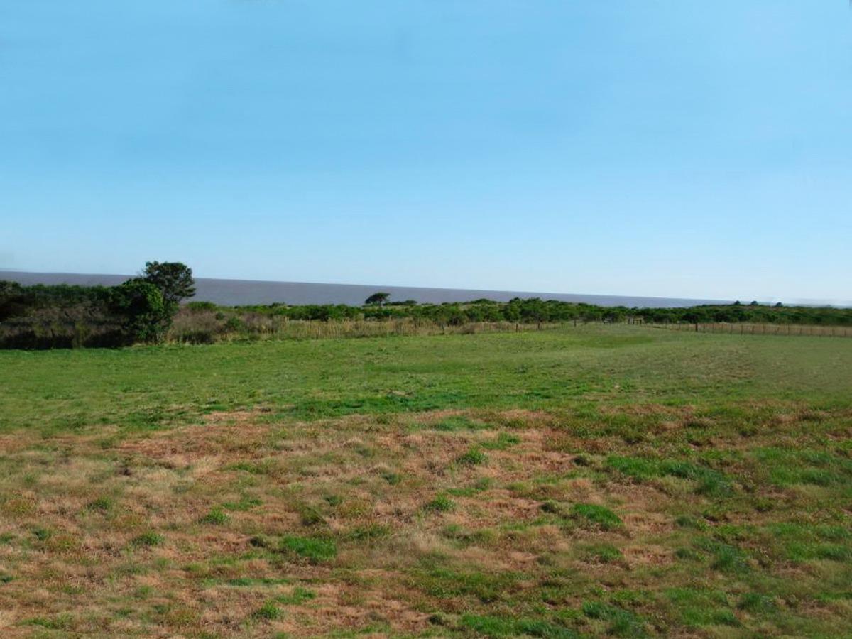 campo con costa del río de la plata ref. 260