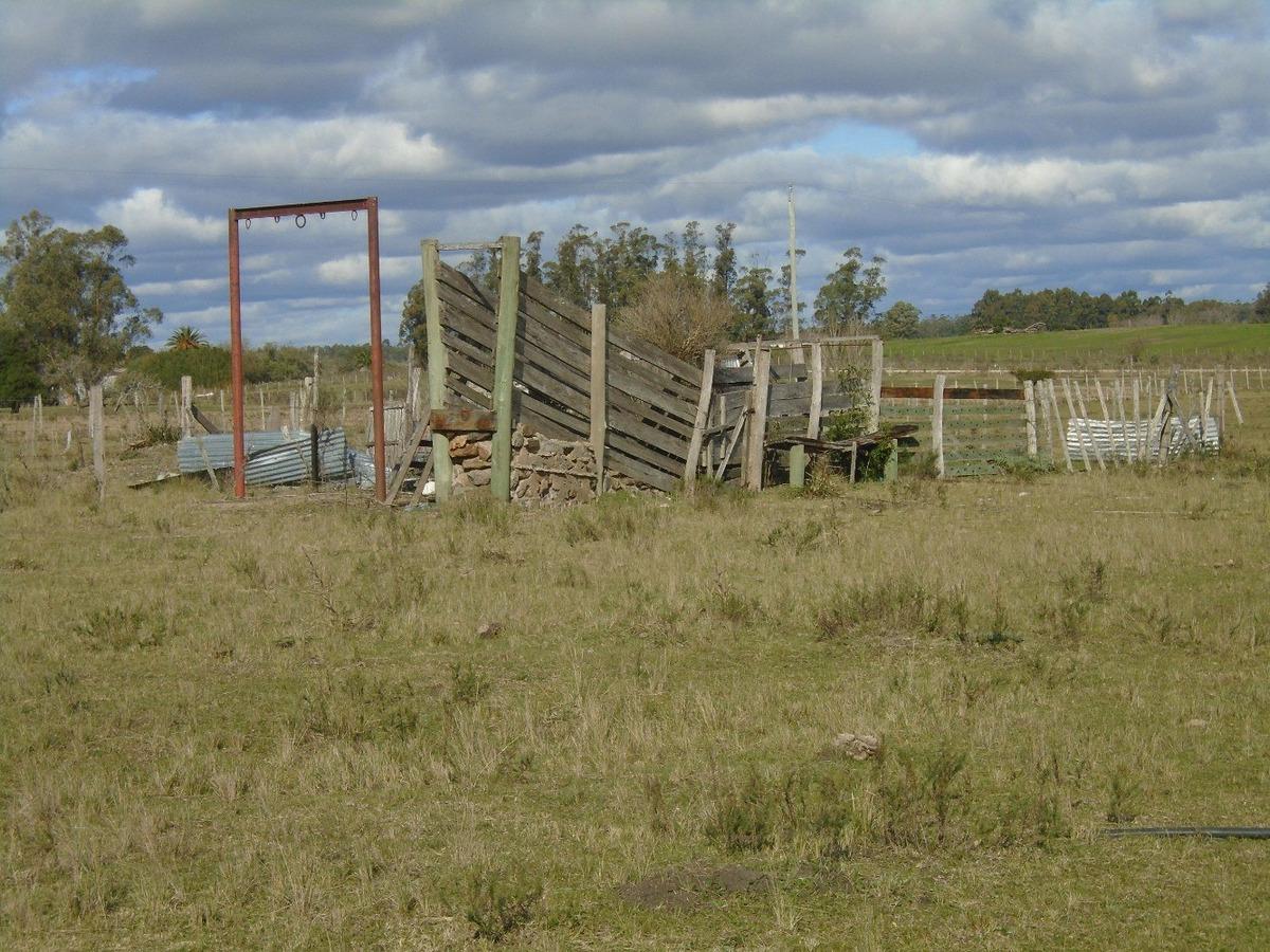 campo con vivienda y galpón , arroyo