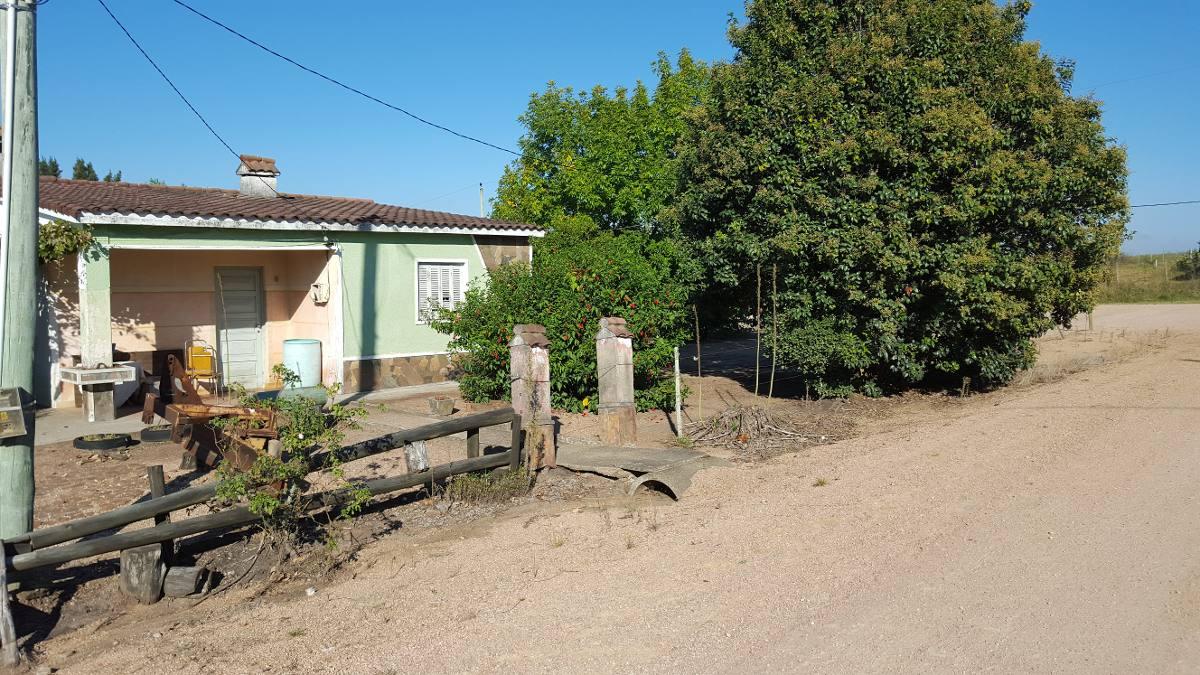 campo de 12 hectareas con , dos casas + casa caseros y casco