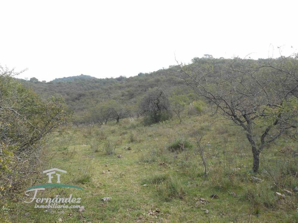 campo de 13 hectáreas en venta en santa rosa de calamuchita