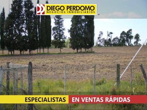 campo de 13,4 has en venta, localidad de libertad - uruguay