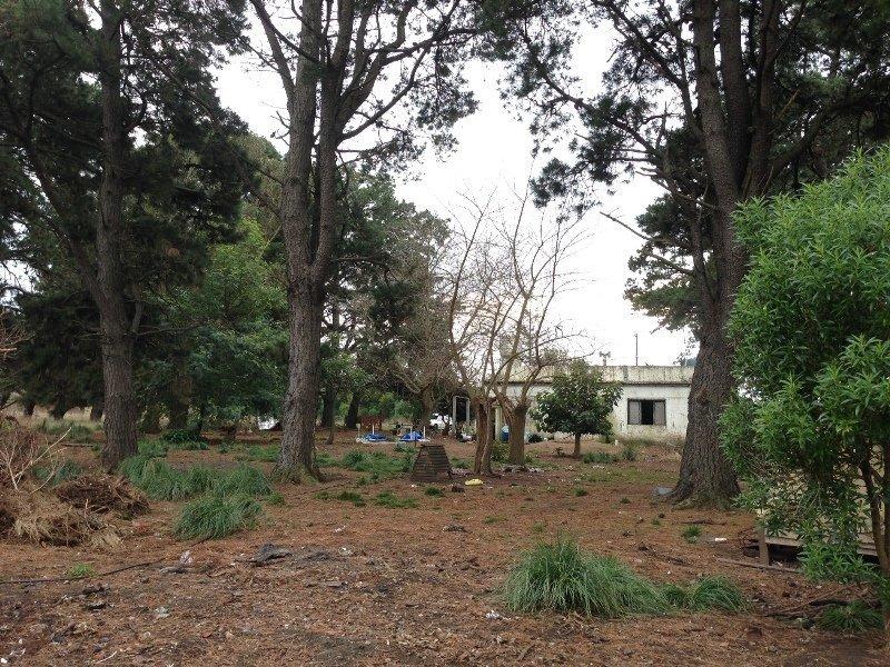 campo de 1,7 hectareas para emprendimiento o explotacion