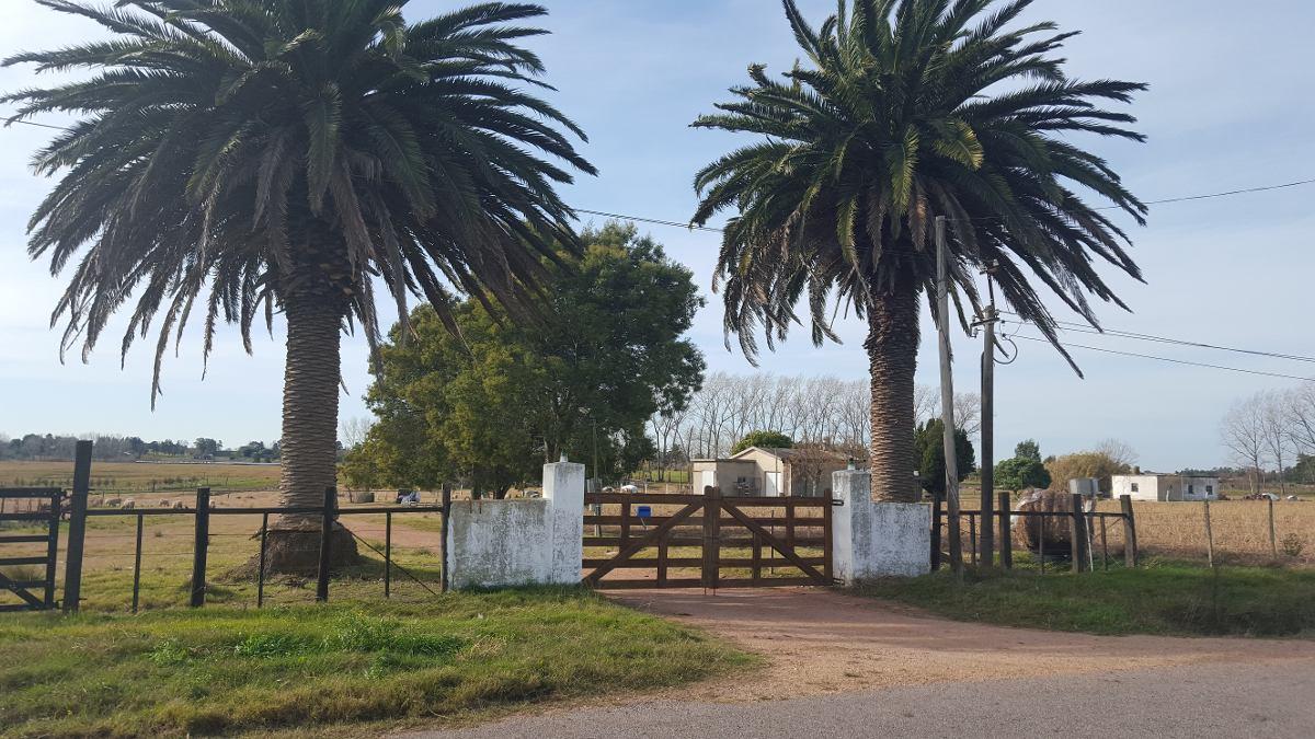 campo de 23 hectareas cerca del pueblo,casa,barbacoa,galpon