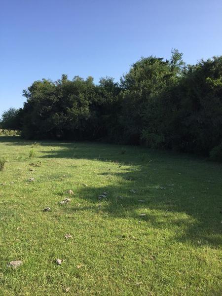 campo de 252 has en durazno. costas sobre arroyo. apto para ganadería y arroz! proponga!