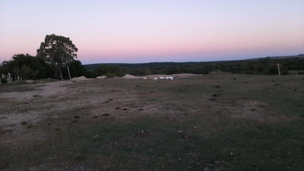 campo de 31 hectareas rio tacuari, rincon de los coronel