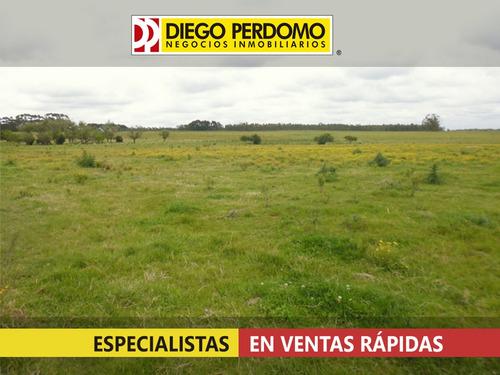 campo de 32 has en venta, san josé - uruguay
