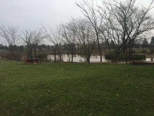 campo de 4 hectareas en venta y alquiler