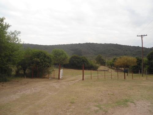 campo de 45 hectáreas a la venta en los hornillos
