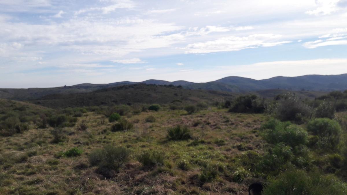campo de 488 hectáreas a 100 km de montevideo