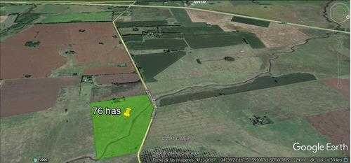 campo de 76 hectáreas gral. rodriguez