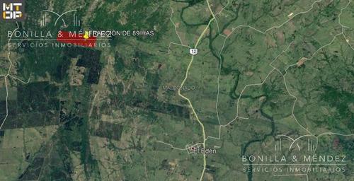 campo de 89 hectáreas en pueblo edén