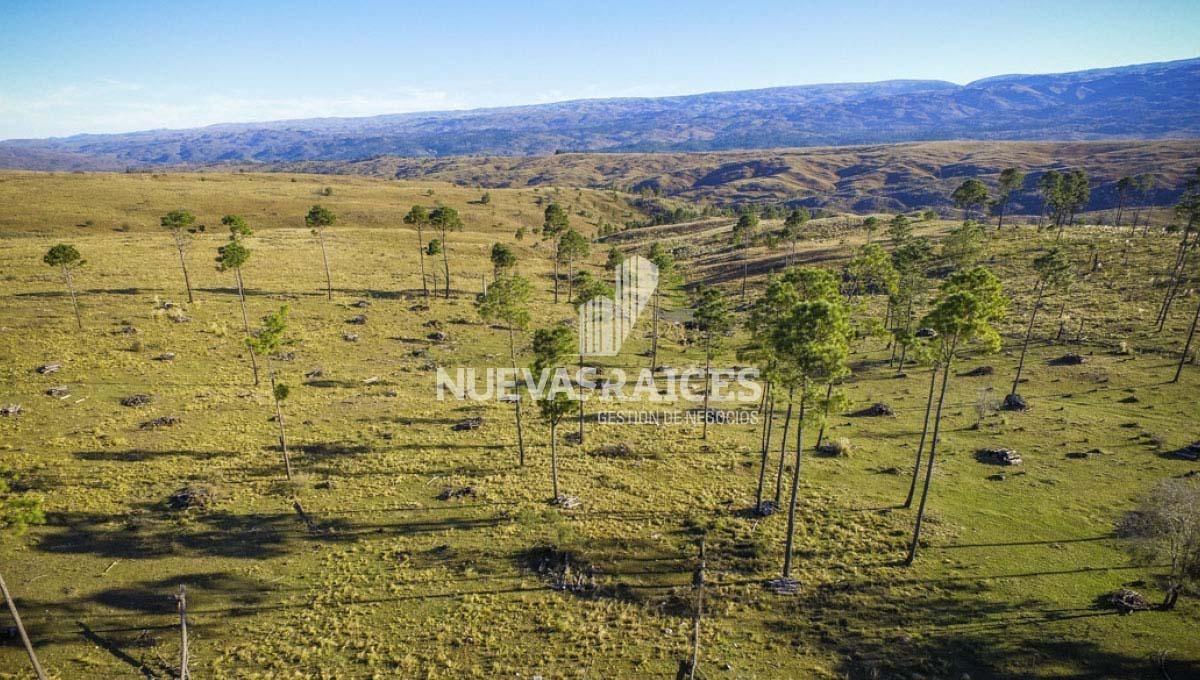 campo del libertador yacanto calamuchita barrio cerrado - lotes de 1000m2